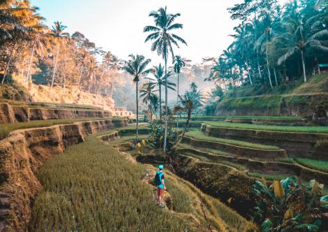 indonesia_6