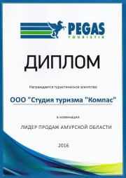 Диплом Пегас 2016