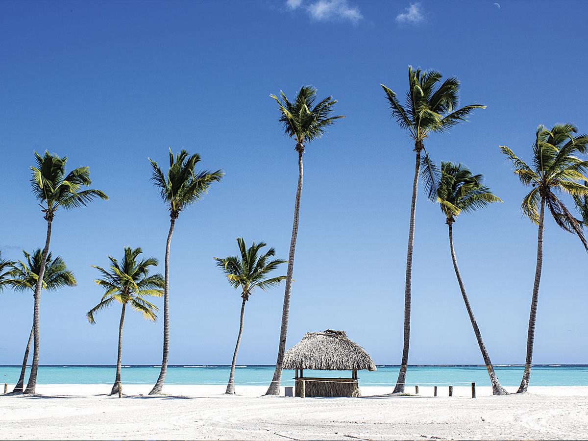 доминикана фото пляжей пунта кана нашей